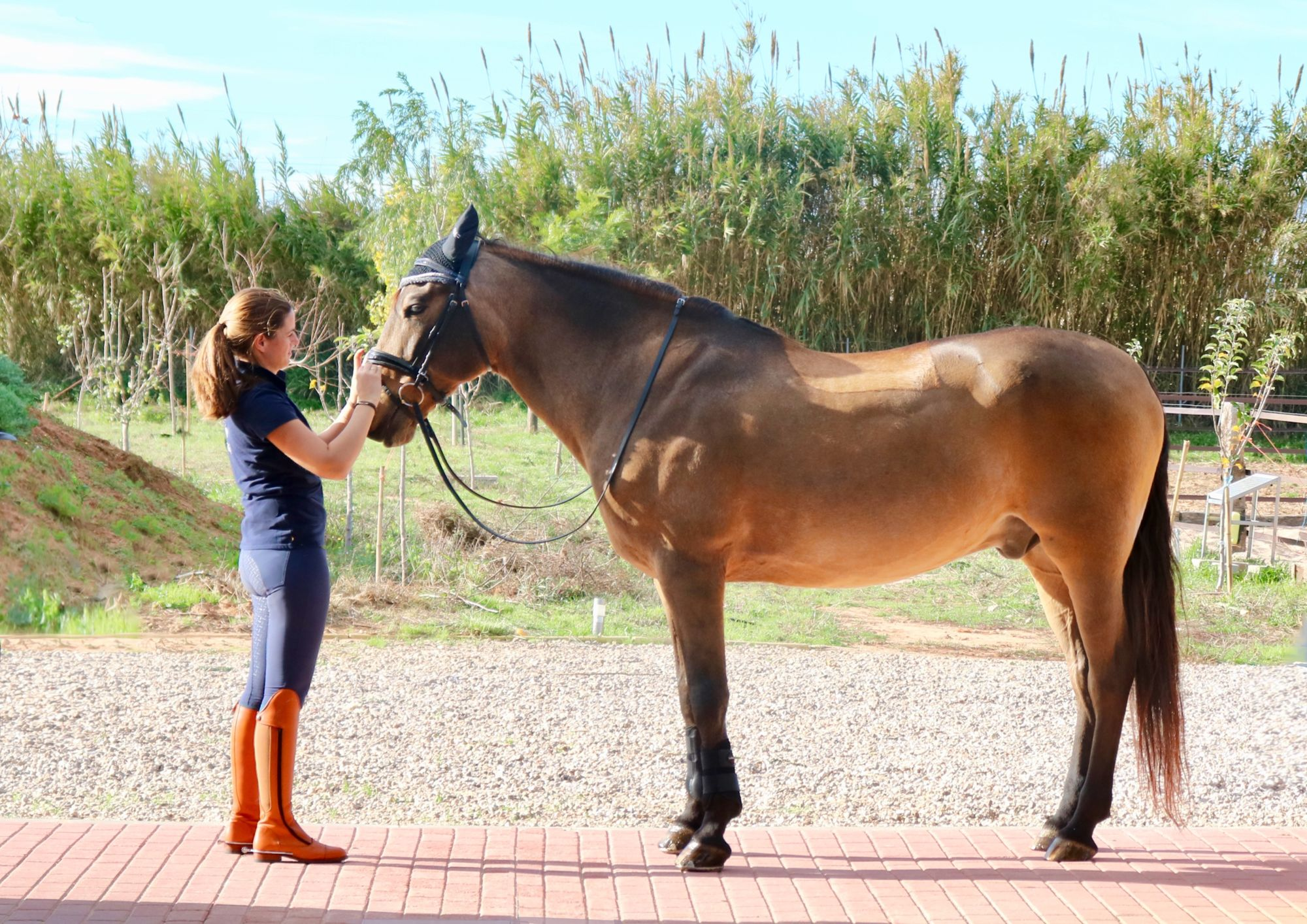 CSI2* VILAMOURA SUMMER TOUR JUMPING | 3.25 julio 20 @ Vilamoura Equestrian Centre, Portugal