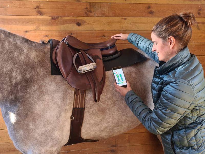 Harmony sensor pad, available from TIBO Equestrian